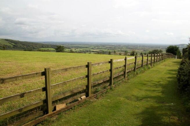 Field View.JPG