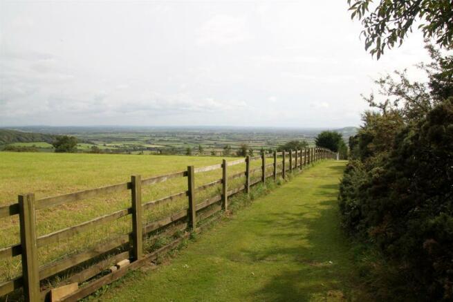 Field View (2).JPG
