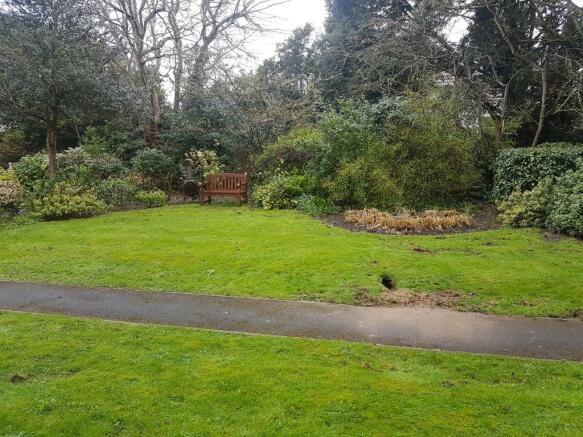 Garden (1).jpg