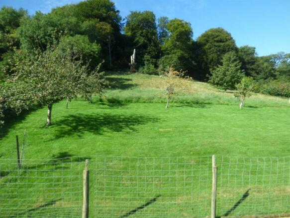 Orchard / Land