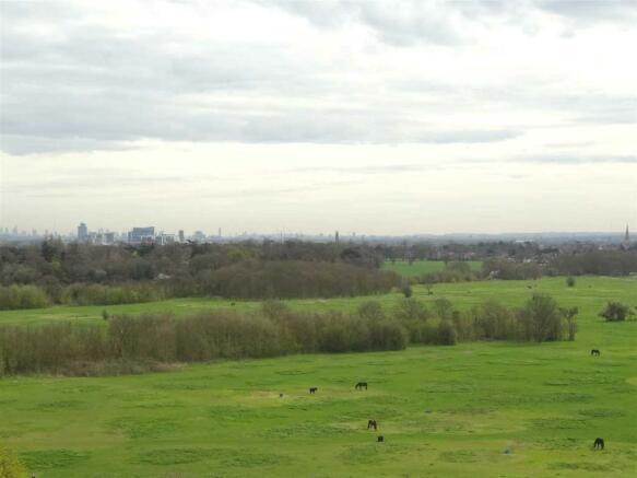 Farmland Views