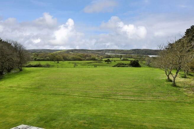 South facing lawn