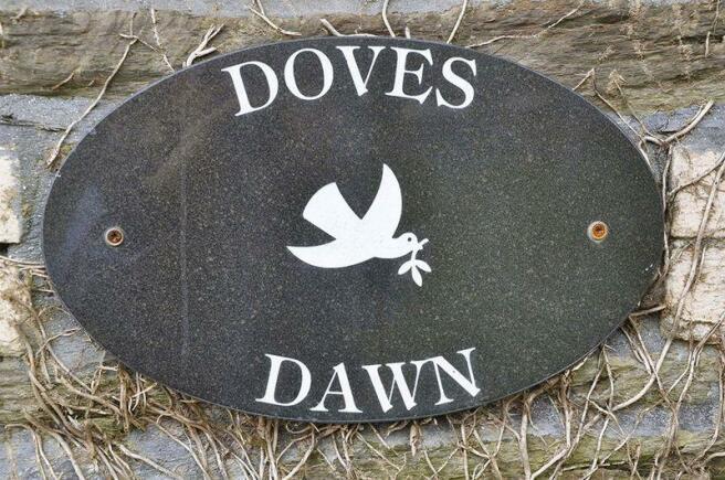 Doves Dawn