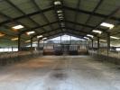 Land For Sale In Wilby Nr Stradbroke Suffolk Ip21