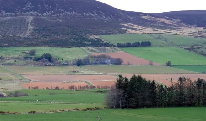 Farm Facing North