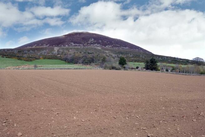 Land Facing North