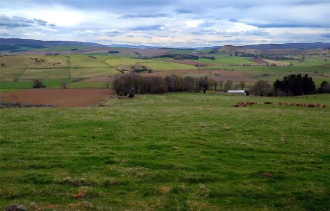 Land Facing South