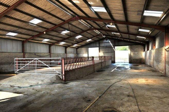 Cattle Court