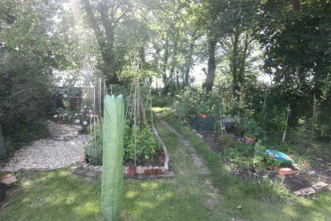 not garden 2.jpg