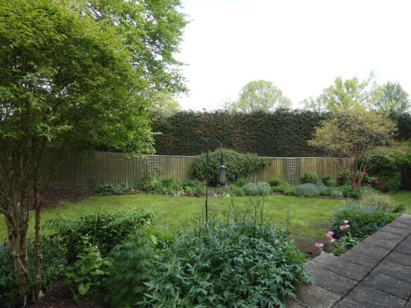 new garden 4.JPG