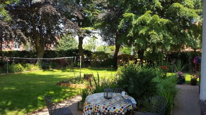 Garden (Summer sh...