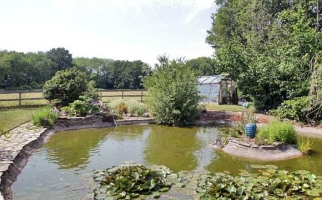 Ornamental Pond