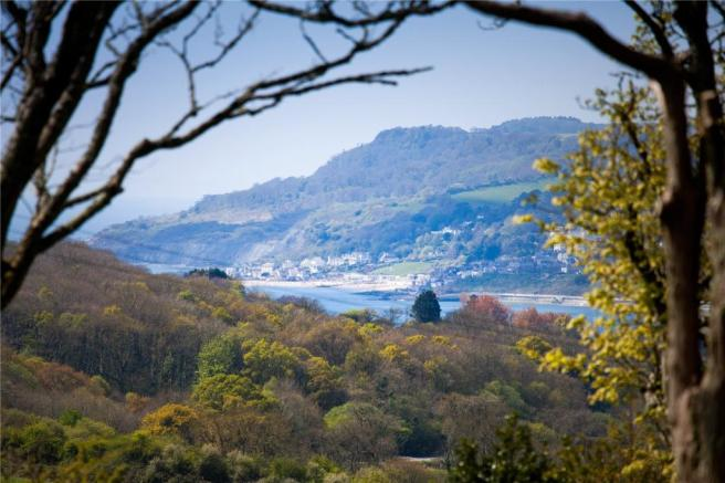 View To Lyme Bay
