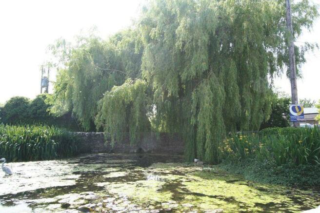 Victorian Pond