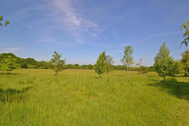 18 Acres available s