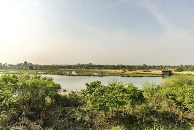London Wetlands View