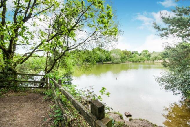 Creekmoor Pond