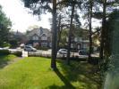 Communal Front Lawns