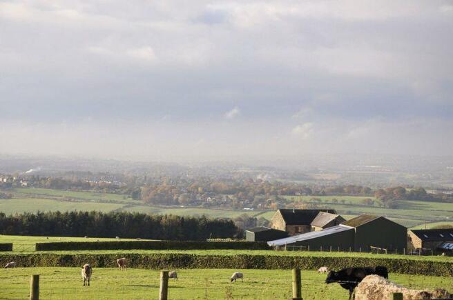 Semi-rural locale