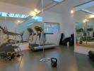 Office set up as gym