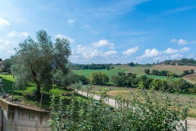 Panorama views