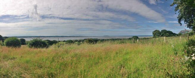 Panoramic View...