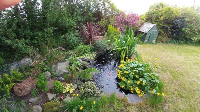 Garden view 3.jpg
