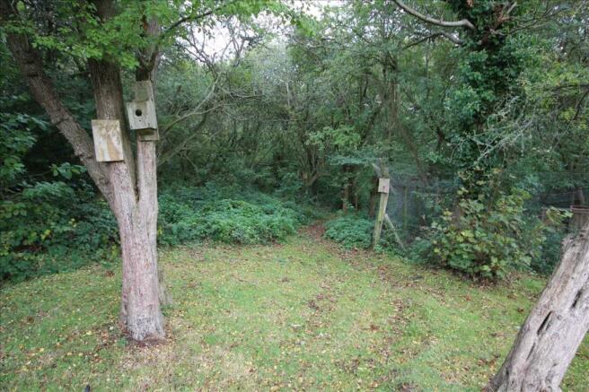 Wood Entrance