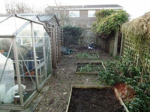 veg plot