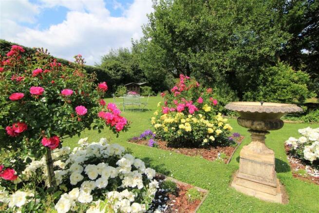 Garden Cameo.jpg
