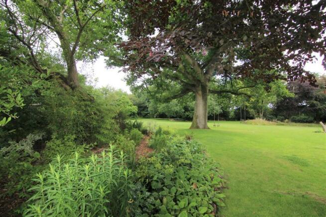 Garden Cameo 3.jpg