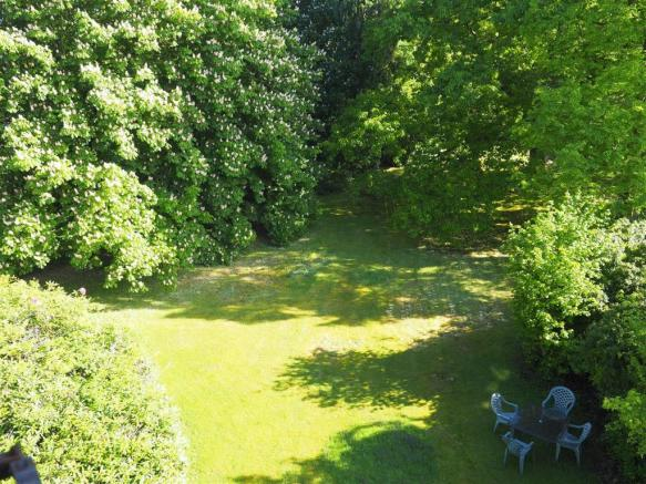 how green front garden top view with sun.JPG