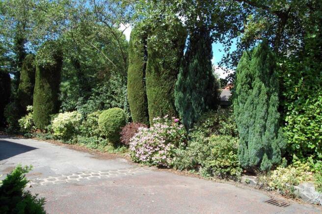 Further Front Garden
