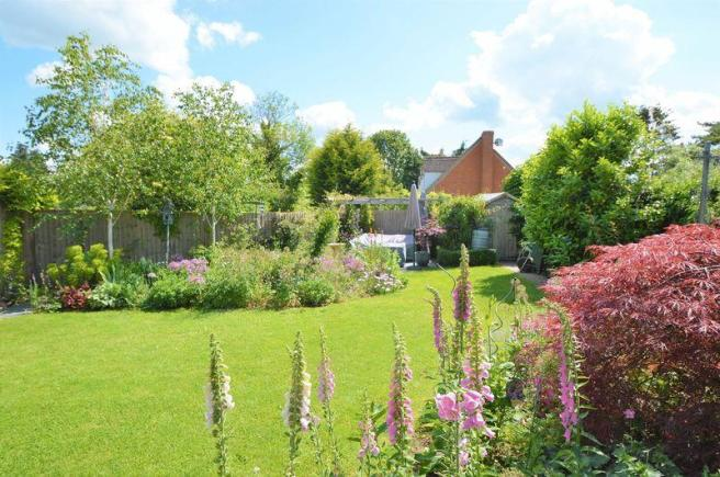 garden (sunny)