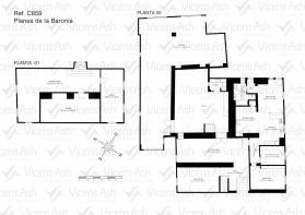 C859 Vicens Ash- El Romeral 01 (opacidad 20)