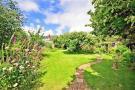 Rear Garden*