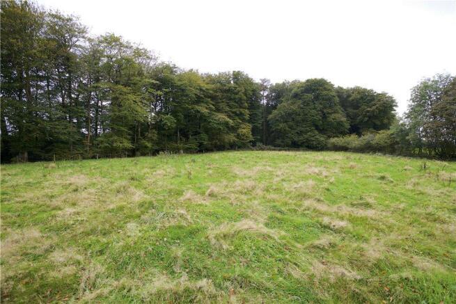 Pasture Lot C
