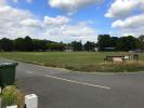 View - Cricket Green