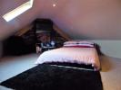 Attic / Bedroom