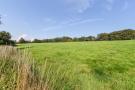 Meadow to rear