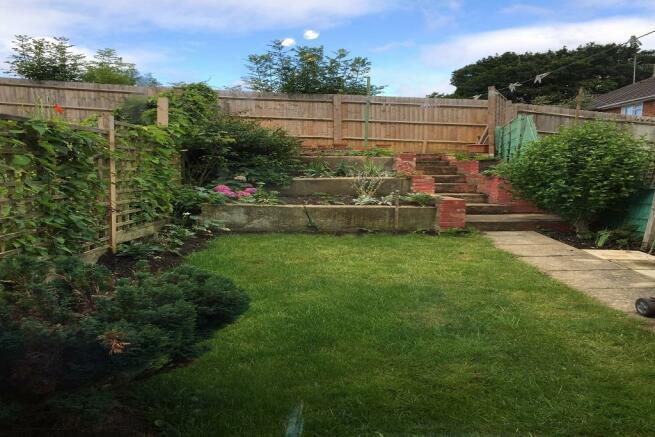 Garden landscape.jpg