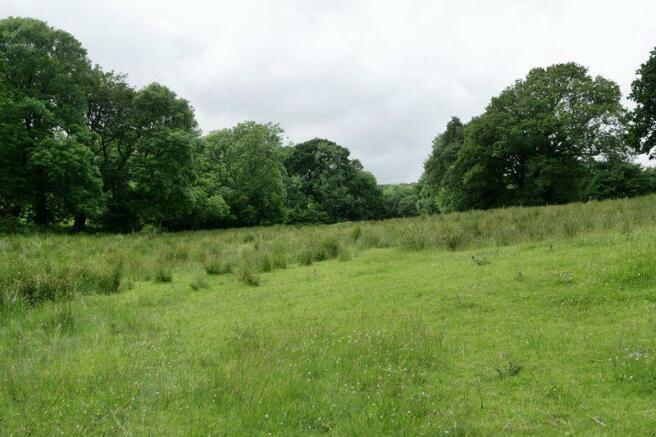 More land