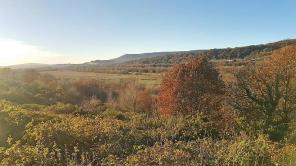 Photo of Land to rear of 45 Neath Road, Tonna, West Glamorgan. SA11 3DQ