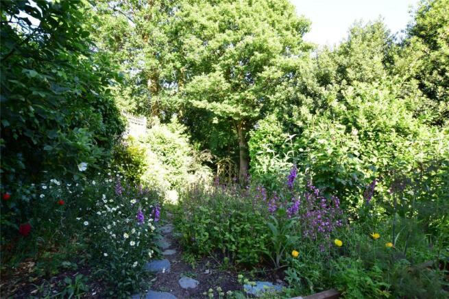 Woodland style garden