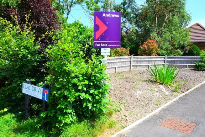 Lilac Drive
