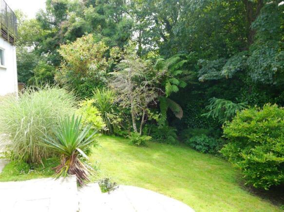 badgers garden 2.JPG
