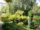 carriage garden 3.JPG