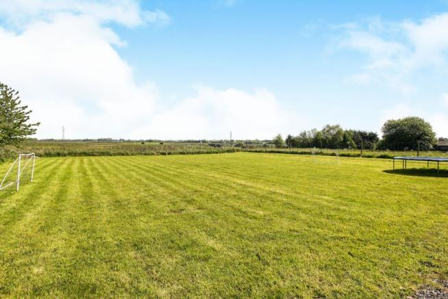 Farm Field Views