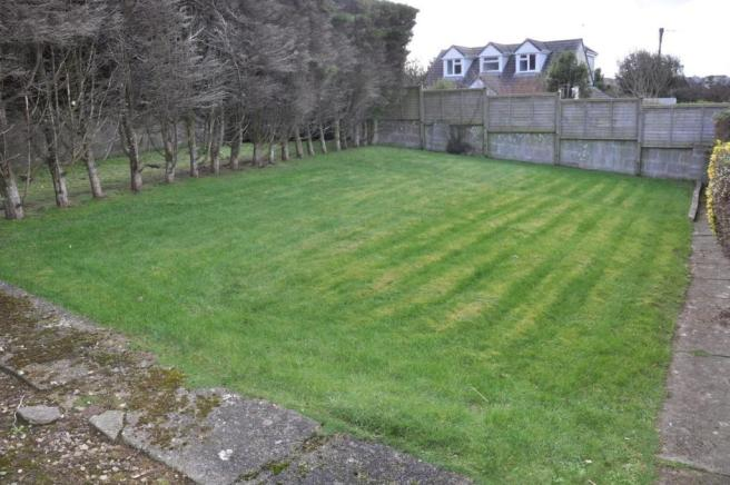 back grass.jpg
