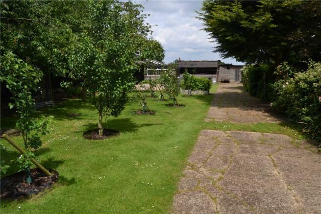 Treetops Orchard area